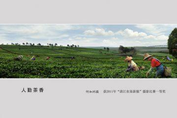 """第67期海魂影展(2011年""""幸福湛江""""会员获奖作品)"""