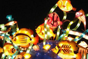 第44期海魂影展(2006寒假作品)
